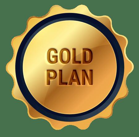 plan pagina web gold