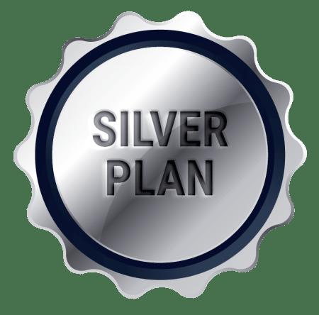 Plan pagina web silver